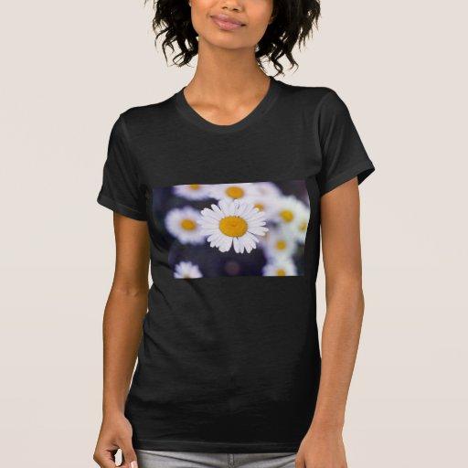 Flores amarillas de la margarita de ojo de buey (L Camisetas