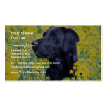 flores amarillas de Labrador Plantillas De Tarjeta De Negocio