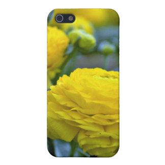Flores amarillas de los Peonies iPhone 5 Carcasa