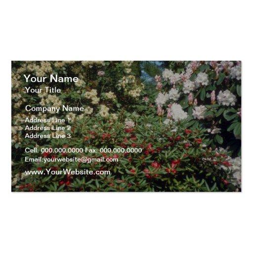 Flores amarillas de los rododendros tarjeta de visita