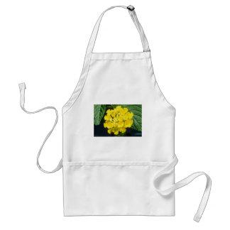 flores amarillas del camara del Lantana Delantal