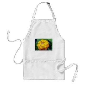 flores amarillas del camara del Lantana Delantales
