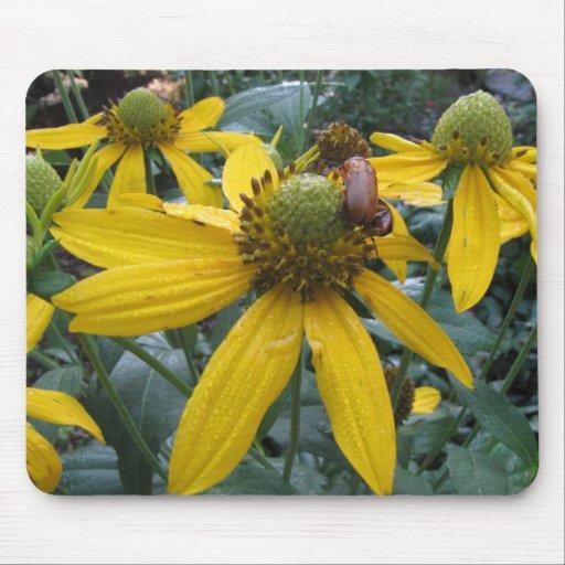 Flores amarillas del cono, escarabajo minúsculo alfombrilla de ratón