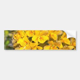 flores amarillas del Dendrobium Etiqueta De Parachoque
