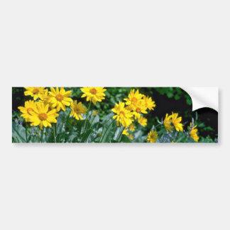 Flores amarillas del grupo de la margarita etiqueta de parachoque