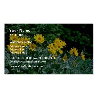 Flores amarillas del grupo de la margarita tarjeta de visita