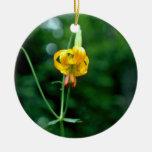 Flores amarillas del lirio tigrado adorno