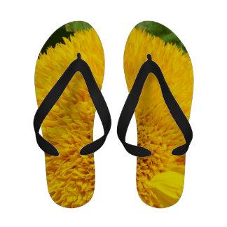 Flores amarillas del personalizado de los girasole