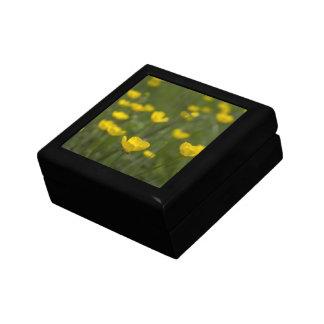Flores amarillas del ranúnculo cajas de joyas