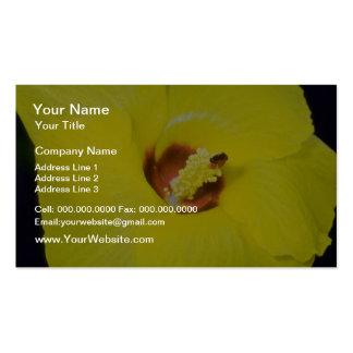 flores amarillas del tillaceus del hibisco tarjeta de visita