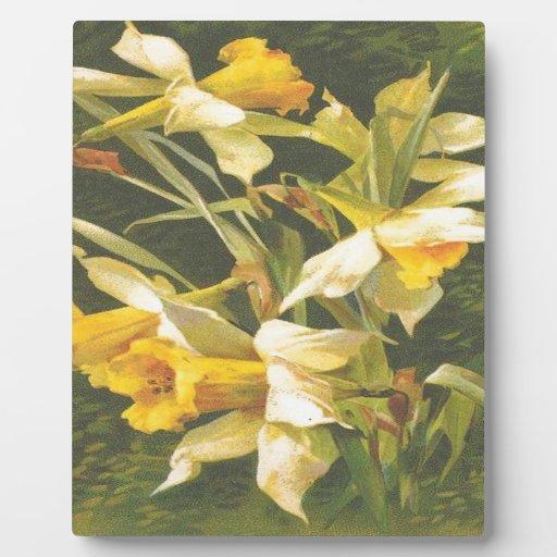 Flores amarillas del vintage placa
