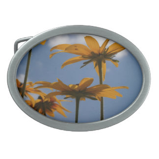 Flores amarillas en el cielo hebilla de cinturón oval