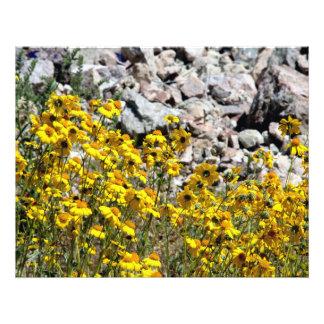 Flores amarillas en el desierto