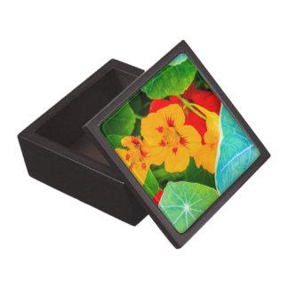 Flores amarillas en una fila caja de recuerdo de calidad
