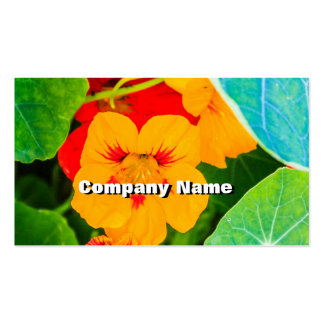Flores amarillas en una fila tarjetas de visita