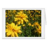 flores amarillas felicitación