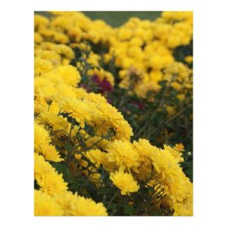 Flores amarillas flyer a todo color