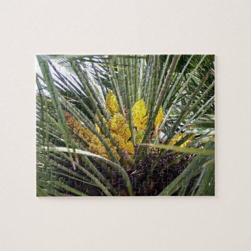 Flores amarillas fragantes de la palmera puzzle con fotos