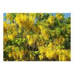 Flores amarillas hermosas de la lluvia de oro Tree Invitacion Personalizada