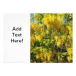 Flores amarillas hermosas de la lluvia de oro Tree Comunicado