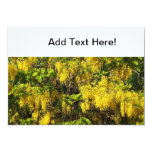 Flores amarillas hermosas del árbol de lluvia de invitación 12,7 x 17,8 cm