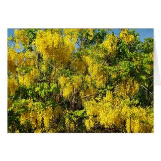 Flores amarillas hermosas del árbol de lluvia de o tarjeton