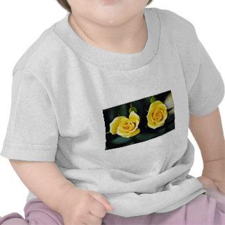 """Flores amarillas híbridas de """"Oregold"""" del rosa de Camiseta"""