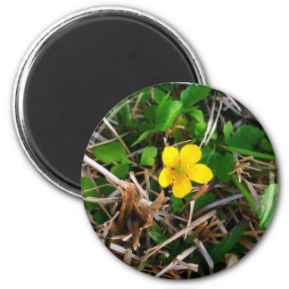 Flores amarillas imán redondo 5 cm