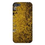 Flores amarillas iPhone 5 cárcasa