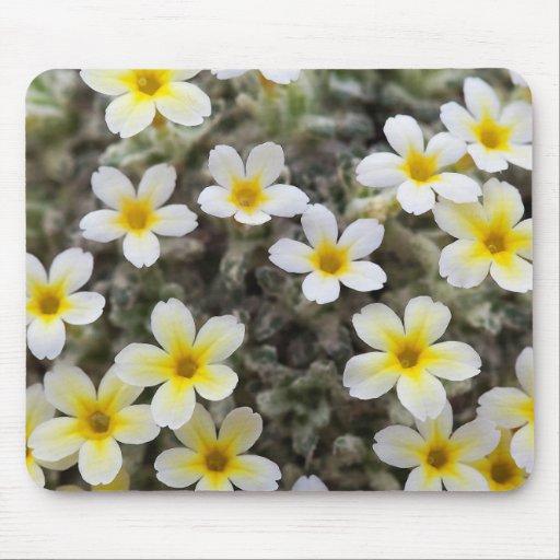Flores amarillas minúsculas alfombrilla de ratón