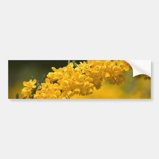 Flores amarillas minúsculas etiqueta de parachoque