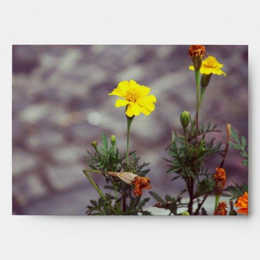 Flores amarillas sobres