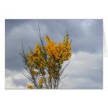 flores amarillas tarjeta de felicitación