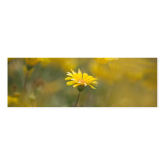 Flores amarillas tarjetas de visita mini