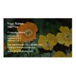 Flores amarillas y anaranjadas de las amapolas plantilla de tarjeta de negocio
