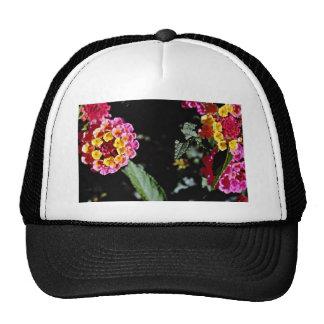 Flores amarillas y rosadas de las cabezas de flor gorras de camionero