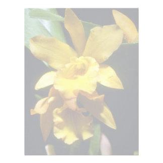 flores amarillo-naranja de la pepita (Brassocattle Plantillas De Membrete