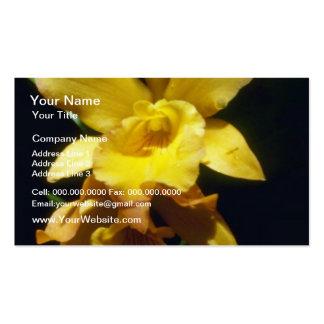flores amarillo-naranja de la pepita (Brassocattle Plantilla De Tarjeta De Visita
