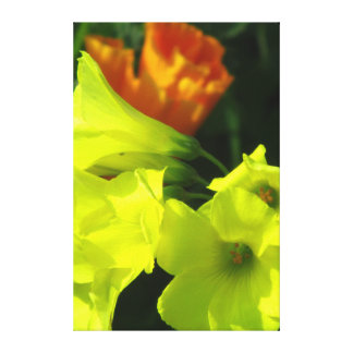 Flores amarillo-naranja hermosas impresiones en lienzo estiradas