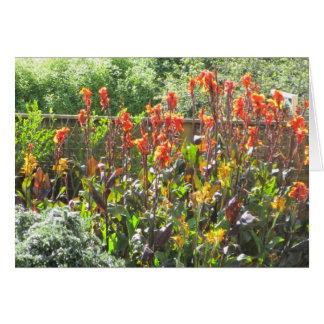 Flores anaranjadas altas tarjeta de felicitación