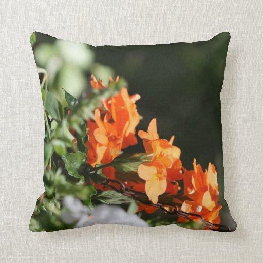 flores anaranjadas contra la parte posterior del v almohadas