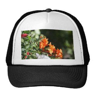 flores anaranjadas contra la parte posterior del v gorras de camionero