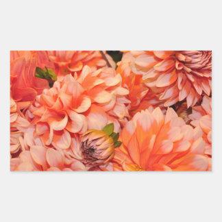 Flores anaranjadas de la dalia rectangular altavoces