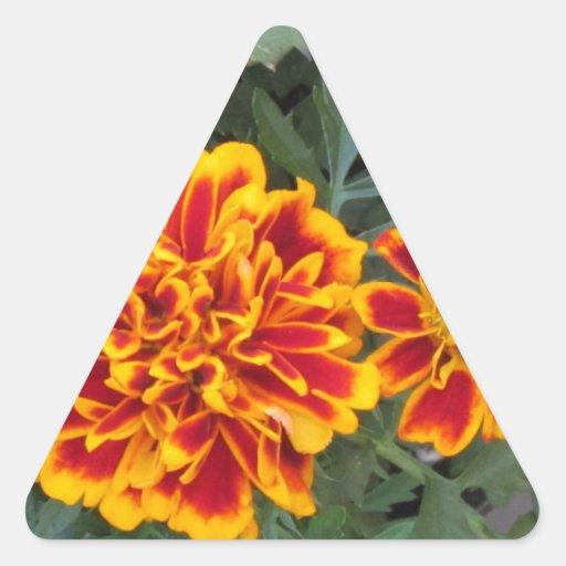 Flores anaranjadas de la maravilla pegatina triangular