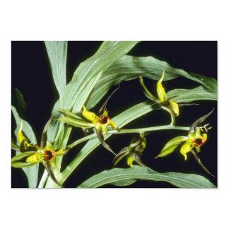 Flores anaranjadas del Expansum (Catasetum) Invitación 12,7 X 17,8 Cm