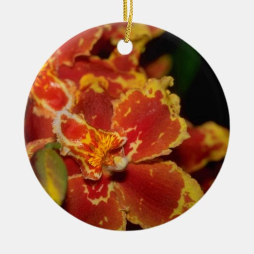 Flores anaranjadas del forbesii de Oncidium Adorno Redondo De Cerámica