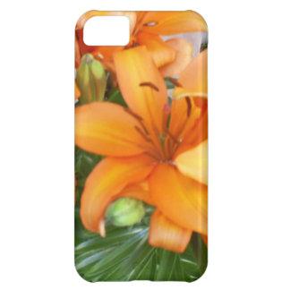 Flores anaranjadas del lirio