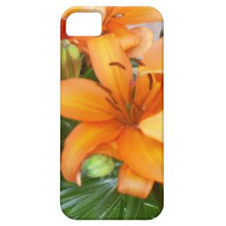 Flores anaranjadas del lirio iPhone 5 cobertura