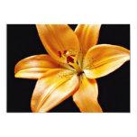 Flores anaranjadas del lirio invitación 12,7 x 17,8 cm