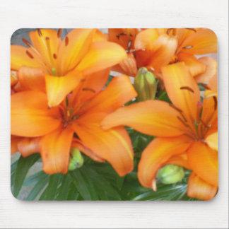 Flores anaranjadas del lirio mouse pad